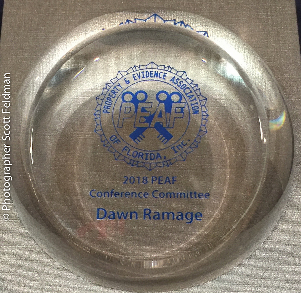 conference-committee-award-dawn-ramage